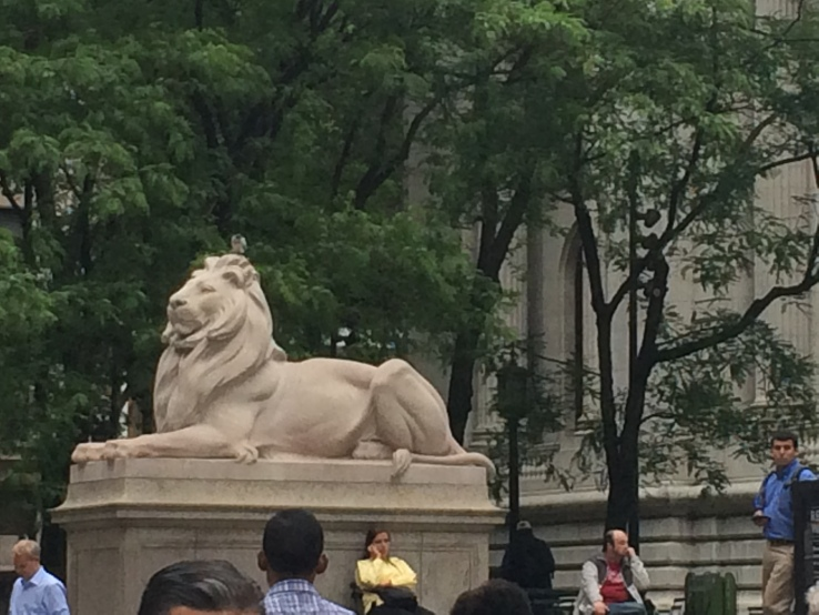 New York Public Library Lion 2