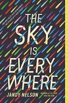 sky-is-everywhere-the